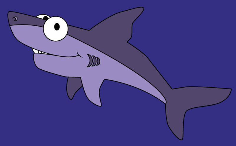 Normal mini shark
