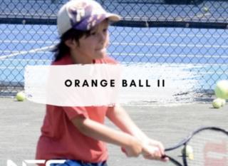 Mobile orange ball ii header pic