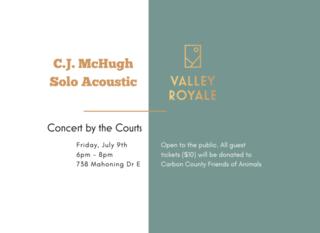 Mobile c.j. mchugh solo acoustic