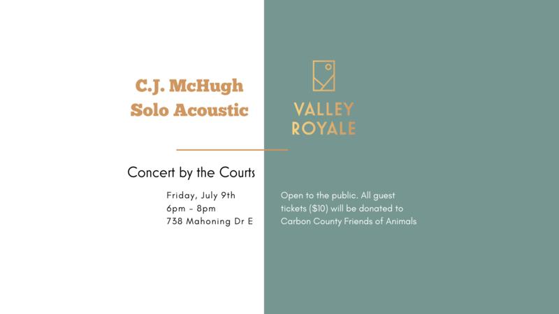 Normal c.j. mchugh solo acoustic