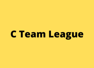 Mobile 3.5 league  2