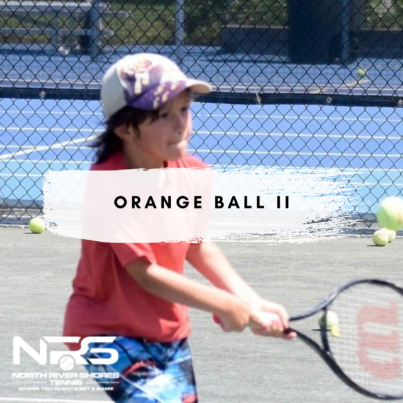 Normal orange ball 2